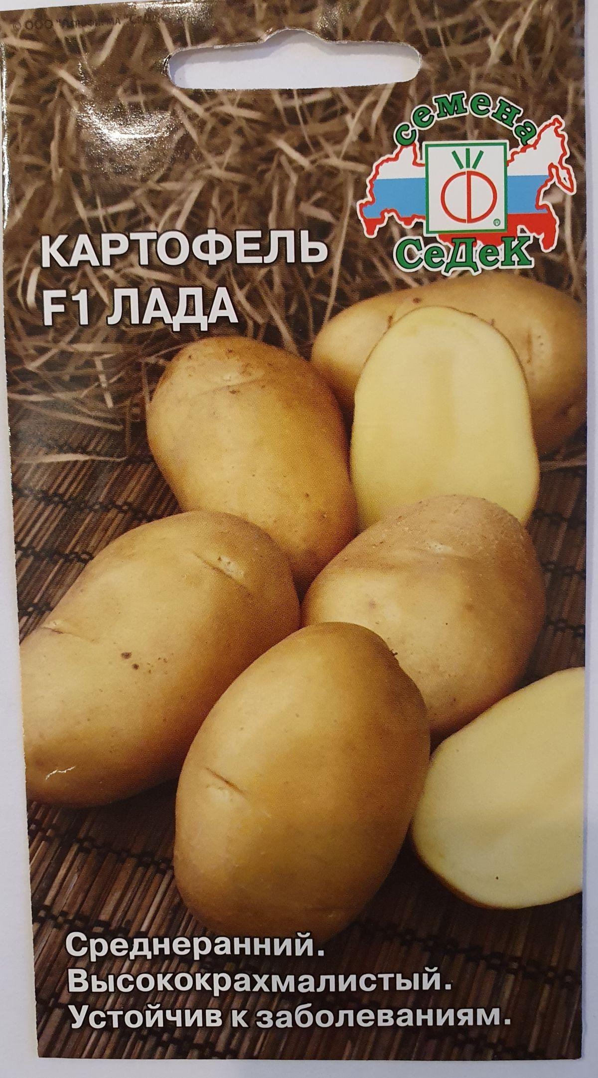 семена картофеля суперранний купить